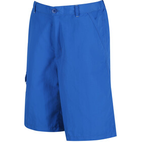 Regatta Sorcer Shorts Kids Skydiver Blue